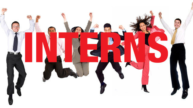 spring summer intern application theatre of western springs